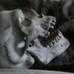 orecchio sapiens