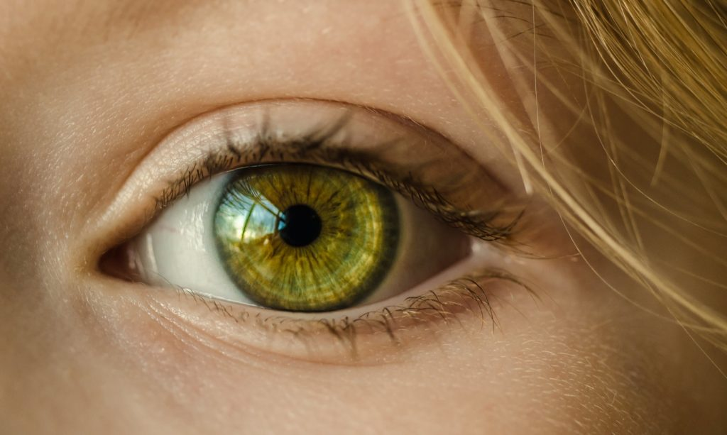 pupilla e udito